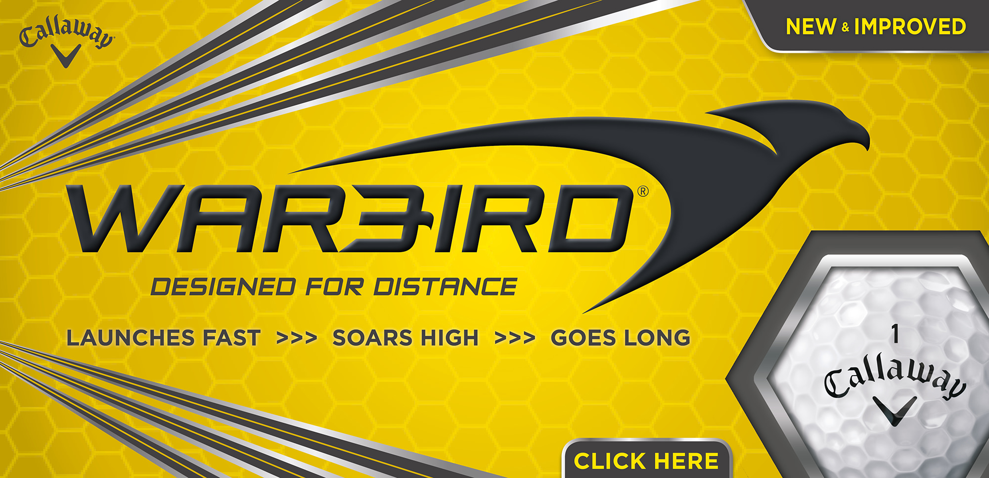 CG2496-Warbird17-webbanner-1200x580-HOMEPAGE